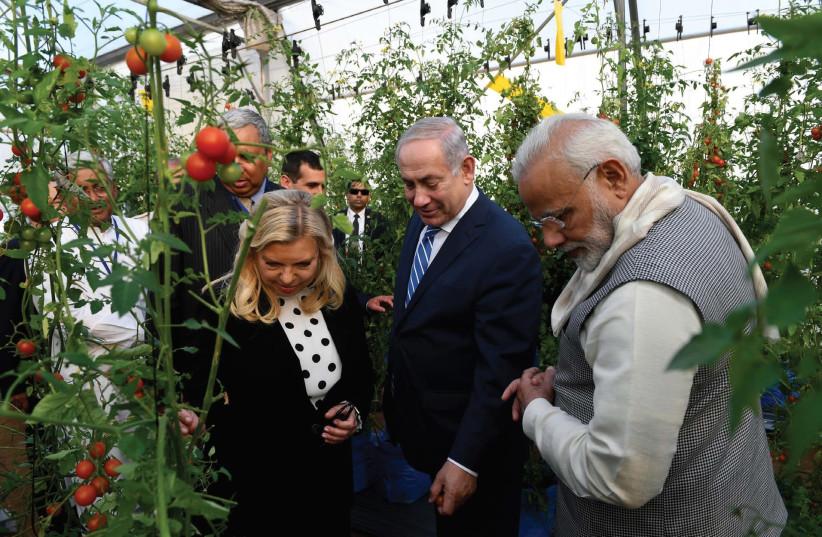 SARA NETANYAHU, her husband, Prime Minister Benjamin Netanyahu, and Indian Prime Minister Narendra Modi tour a hothouse in Gujarat state yesterday. (photo credit: AVI OHAYON - GPO)