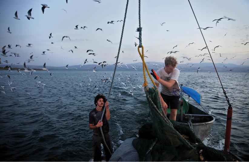 Lac de Tibériade (photo credit: RONEN ZVULUN / REUTERS)