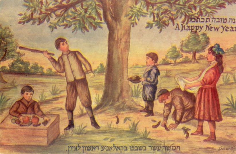 Tu Bishvat in Rishon LeZion from the beginning of the 20th century (ca. 1910) (photo credit: COURTESY OF THE FOLKLORE RESEARCH CENTER HEBREW UNIVERSITY OF JERUSALEM)