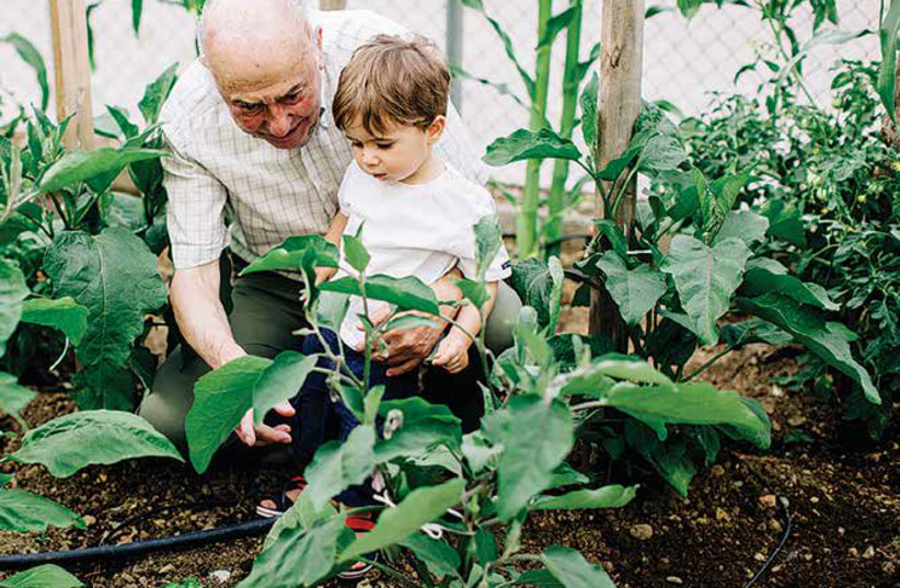 A man and his grandson visit a JNF nursery in Israel. (photo credit: JNF-USA)