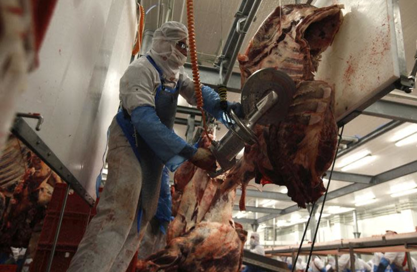 A slaughterer cuts beef carcasses into pieces in the Biernacki Meat Plant slaughterhouse in Golina near Jarocin, western Poland July 17, 2013. (photo credit: KACPER PEMPEL/REUTERS)
