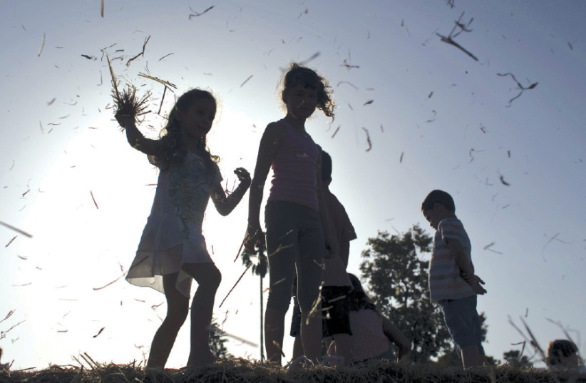 Children play on bales of hay at the annual harvest festival at Kibbutz Deganya Alef in 2015 (photo credit: RONEN ZVULUN/REUTERS)