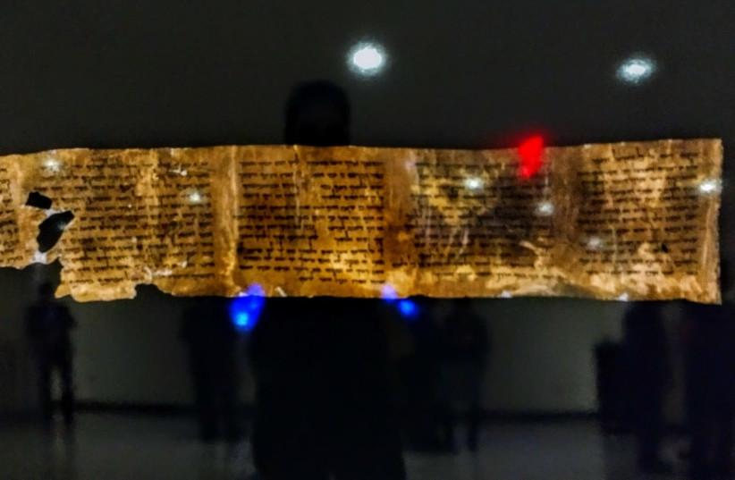 Fragments of dead sea scrolls (photo credit: DANIEL J. ROTH)