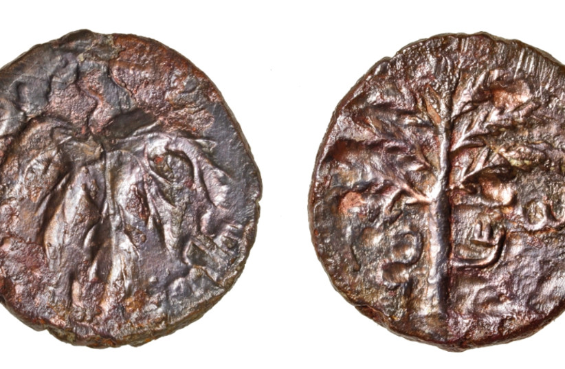 """Coins from Bar Kokhba era discovered by acheological teams in the Qibya cave 30 kilometers northwest of Ramallah as part of the """"Southern Samaria Survey"""" project. (photo credit: COGAT SPOKESMAN)"""