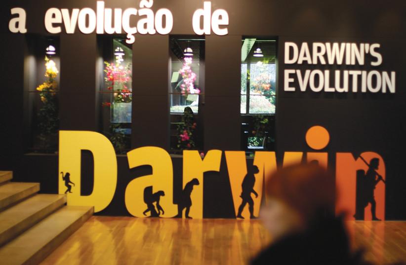 An exhibit about evolution. (photo credit: REUTERS)