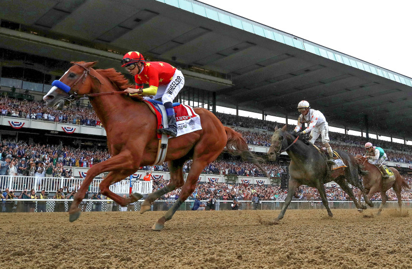 Justify with jockey Mike Smith aboard wins the 150th running of the Belmont Stakes, the third leg of the Triple Crown of Thoroughbred Racing at Belmont Park in Elmont, New York, U.S., June 9, 2018. (photo credit: MIKE SEGAR / REUTERS)