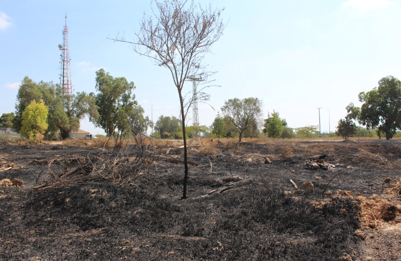 Agricultural land burnt by kites launched from Gaza (photo credit: ERIC NARROW)