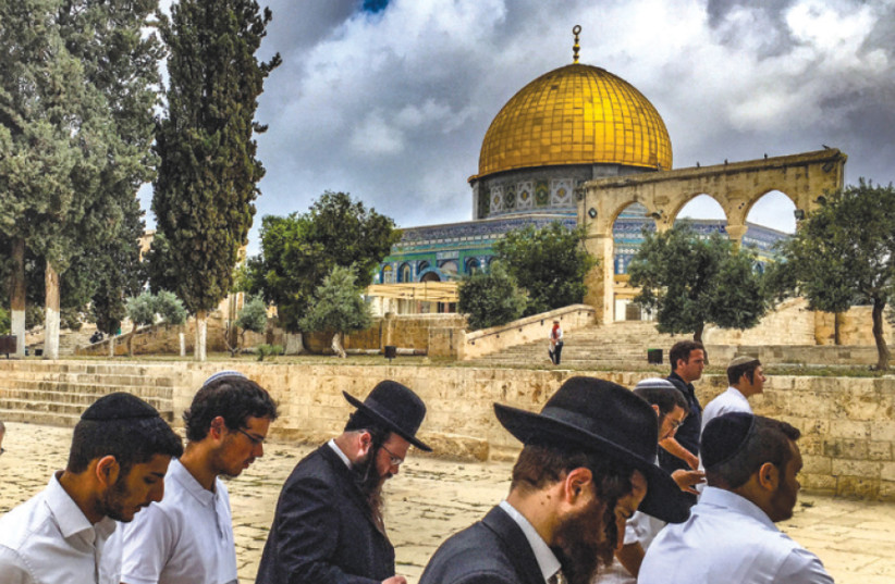 Orthodox Jews on the Temple Mount (photo credit: MENACHEM SHLOMO)