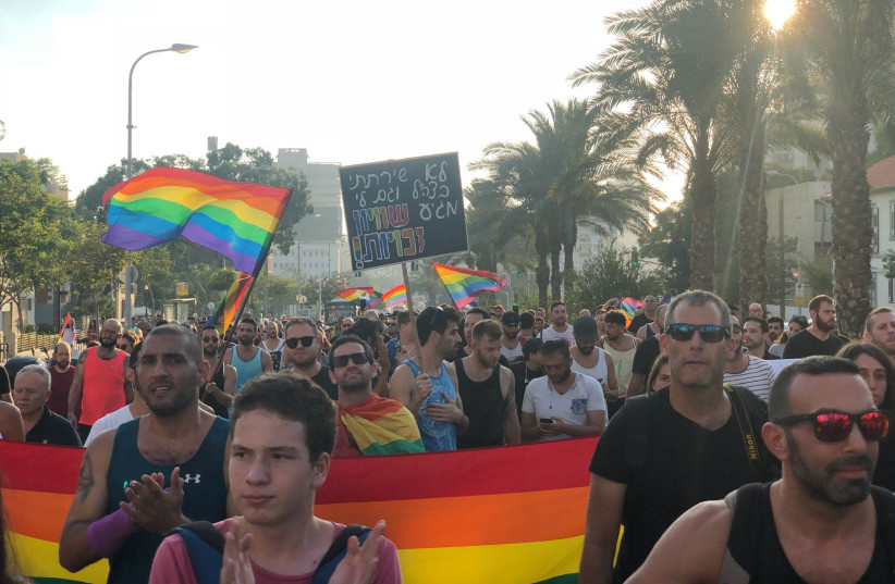 Hundreds of members of LGBT community protest surrogacy law in Tel Aviv (photo credit: Courtesy)