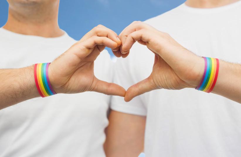 Gay couple celebrates pride [illustrative] (photo credit: INGIMAGE)