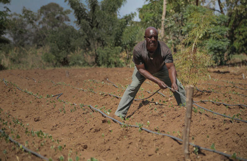 A WORKER plows the field in a still from the Christian Broadcasting documentary To Life: How Israeli Volunteers Are Changing the World (photo credit: INNOVATION:AFRICA)