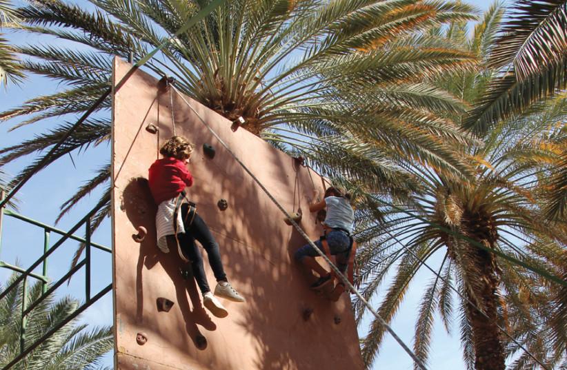 SCALE A climbing wall at the Kibbutz Elifaz happening. (photo credit: NITZAN GOLAN)