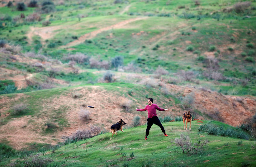 A member of kibbutz plays with his dogs in a field near the border between Israel and Gaza, outside Kibbutz Beeri, Israel November 16, 2018 (photo credit: REUTERS/AMIR COHEN)