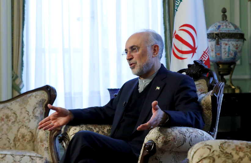 Iran's nuclear chief Ali Akbar Salehi gestures as he speaks to Reuters during an interview in Brussels, Belgium November 27, 2018 (photo credit: YVES HERMAN/REUTERS)