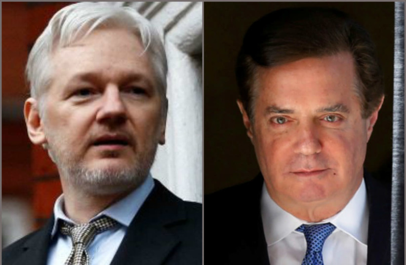 Wikileaks founder Julian Assange and Donald Trump's former campaign manager Paul Manafort (photo credit: REUTERS)