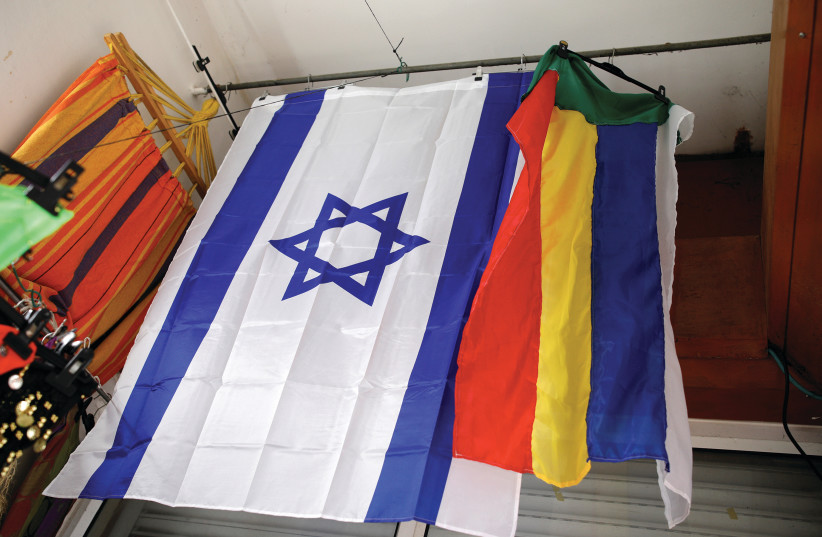 AN ISRAELI and a Druze flag hang from the ceiling of a store in the Druze town of Daliat al-Karmel. (photo credit: AMIR COHEN/REUTERS)