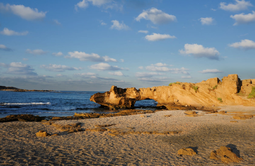Dor habonim beach (photo credit: RAN PERETZ/NATURE AND PARKS AUTHORITY)
