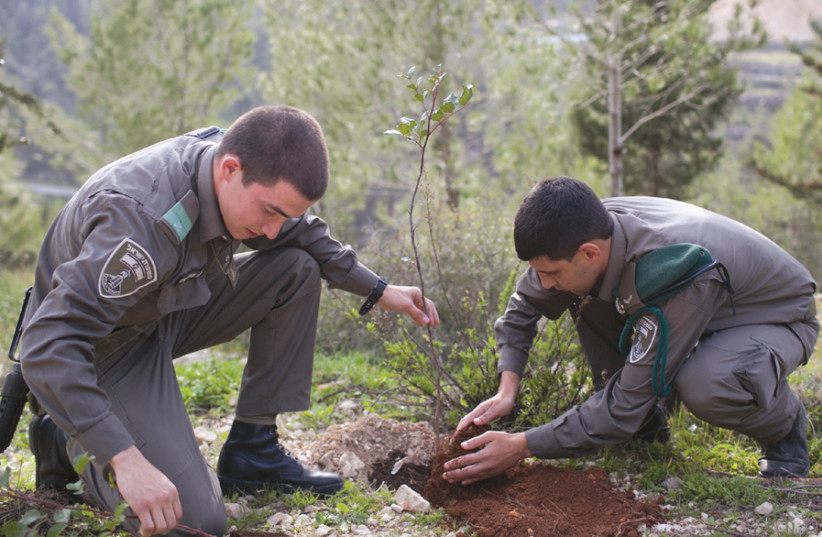 Israeli policemen plant a sapling for Tu Bishvat last year (photo credit: MARC ISRAEL SELLEM)