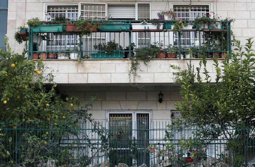 Jerusalem urban gardeners use every inch of balcony space available to plant and grow in all seasons. (photo credit: MARC ISRAEL SELLEM)