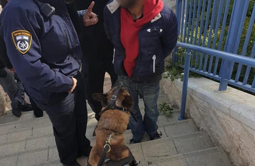 Burglar was caught red handed Jerusalem's Pisgat Ze'ev neighborhood.  (photo credit: POLICE SPOKESPERSON'S UNIT)