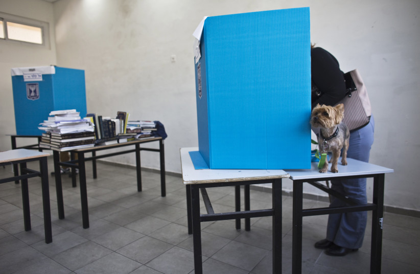 A dog stands on a table as its owner casts her ballot at a polling station in Tel Aviv March 17, 2015. Millions of Israelis voted on Tuesday in a tightly fought election, with Prime Minister Benjamin Netanyahu facing an uphill battle to defeat a strong campaign by the centre-left opposition to deny  (photo credit: NIR ELIAS / REUTERS)