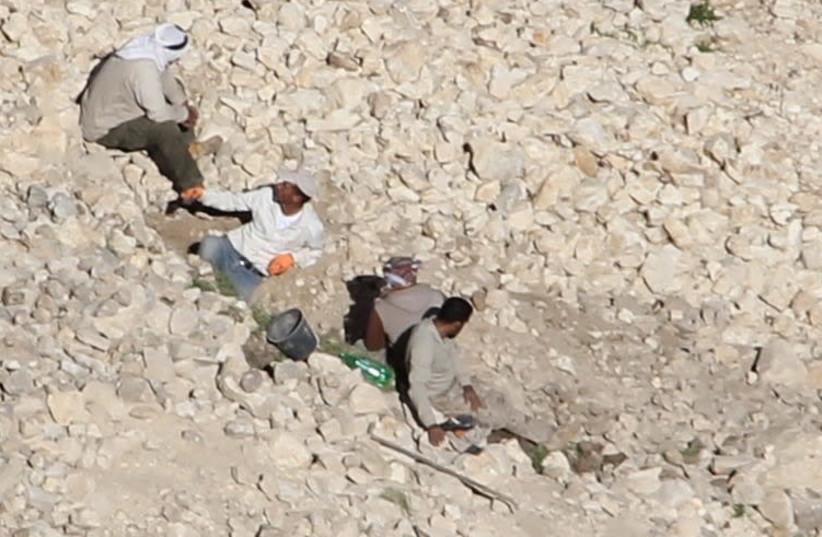 The four antiquities burglars at the Alexandrium archaeological site. (photo credit: COGAT)