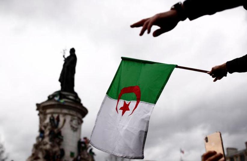 A demonstrator waves an Algerian flag (photo credit: REUTERS/CHRISTIAN HARTMANN)