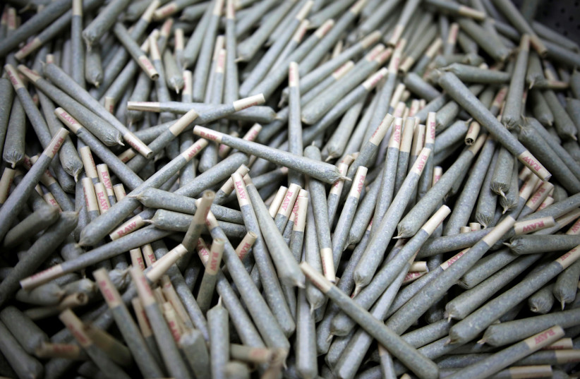 Cigarettes filled with medical cannabis are seen at Pharmocann, an Israeli medical cannabis company in northern Israel January 24, 2019. Picture taken January 24, 2019.  (photo credit: AMIR COHEN/REUTERS)