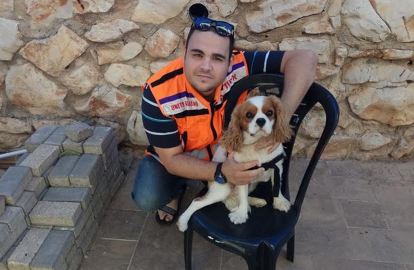 United Hatzalah's Sylvia and Max Shulman psychotrauma K-9 unit (photo credit: UNITED HATZALAH)