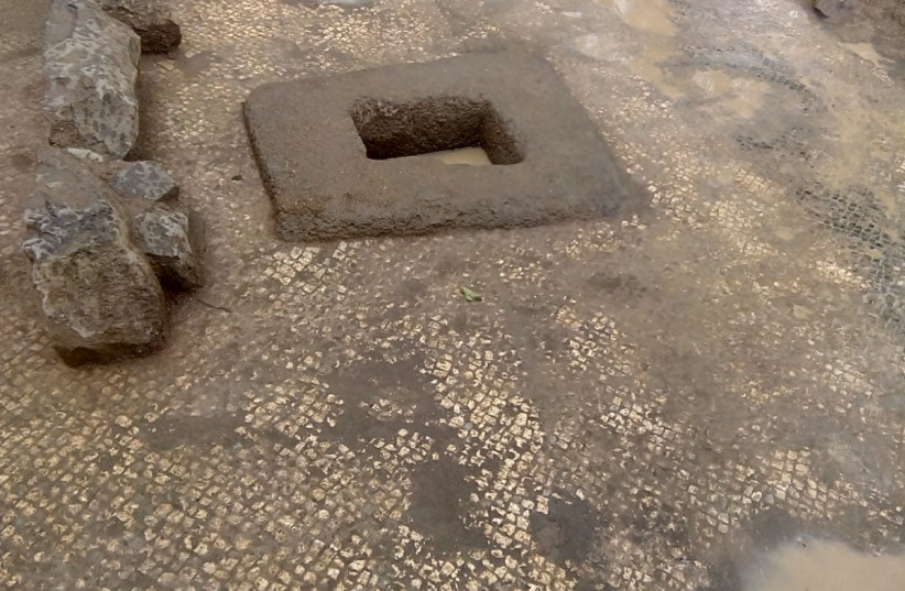 Ancient wine press with Talmudic period mosaic floor discovered in Galile