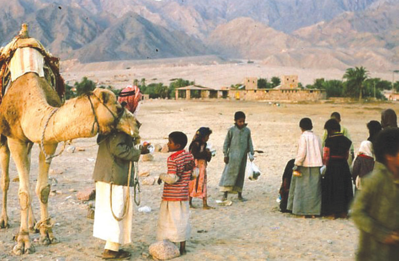 BEDOUIN IN the Sinai desert, 1981: 'It could very well turn out that while Israel gave up Sinai in order to get peace, it might end up with neither.' (photo credit: Wikimedia Commons)