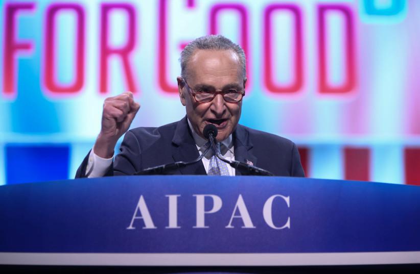 Senator Chuck Schumer (photo credit: Courtesy)