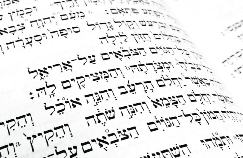 THE AUTHOR dives deep into the meaning of biblical Hebrew words. (photo credit: LUKE JONES/FLICKR)