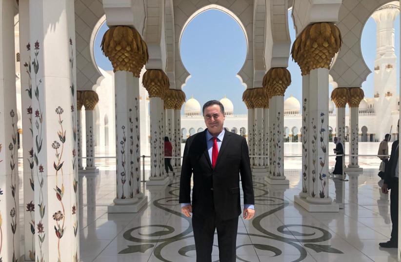 Foreign Minister Yisrael Katz  (photo credit: Courtesy)