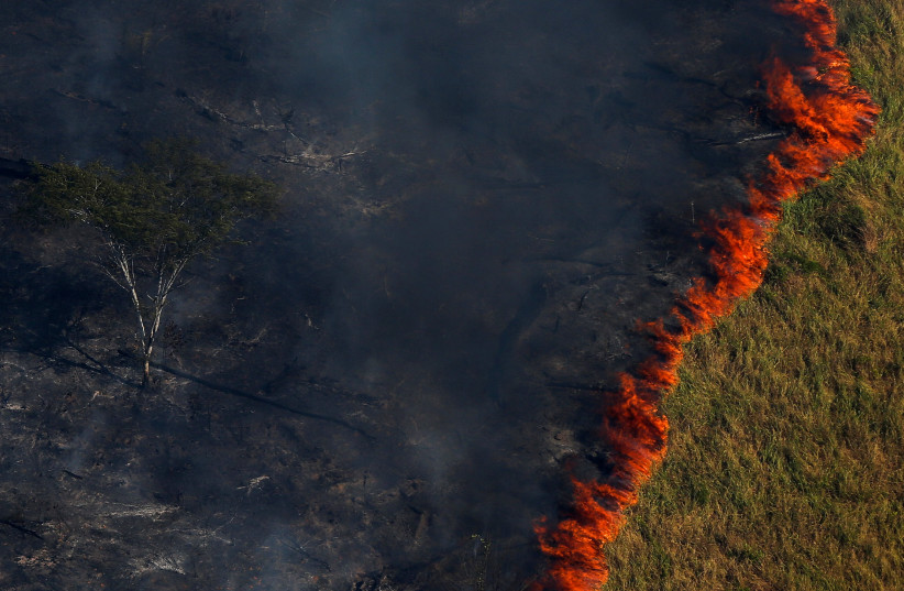 """Burning forest is seen during """"Operation Green Wave"""" to combat illegal logging in the Amazon rainforest (photo credit: BRUNO KELLY/REUTERS)"""