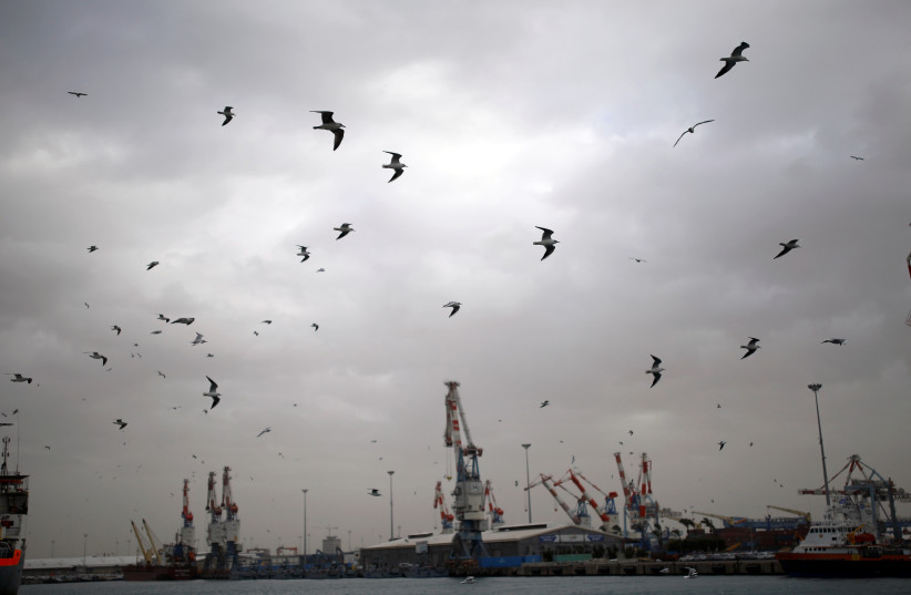 A general view shows seagulls in Ashdod port as a storm approaches Israel's shores January 4, 2018 (photo credit: AMIR COHEN/REUTERS)