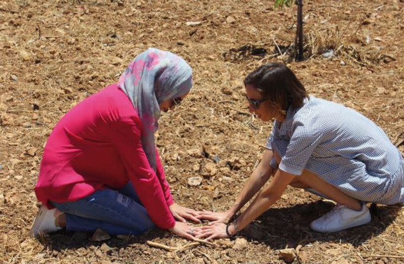 Palestinian and Israeli women who took part in the Roots women's photography workshop plant a tree (photo credit: SASKIA KEELEY)