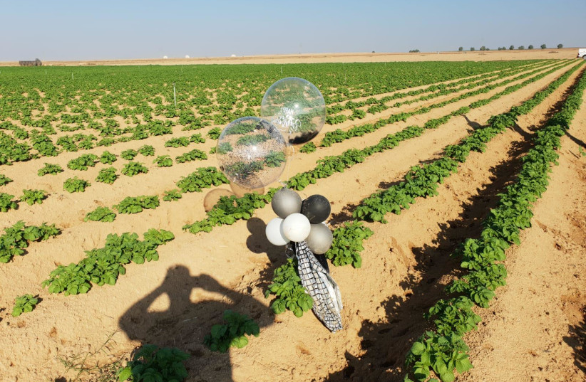 A Palestinian incendiary balloon that landed in a field in Israel (photo credit: ESHKOL REGIONAL COUNCIL)