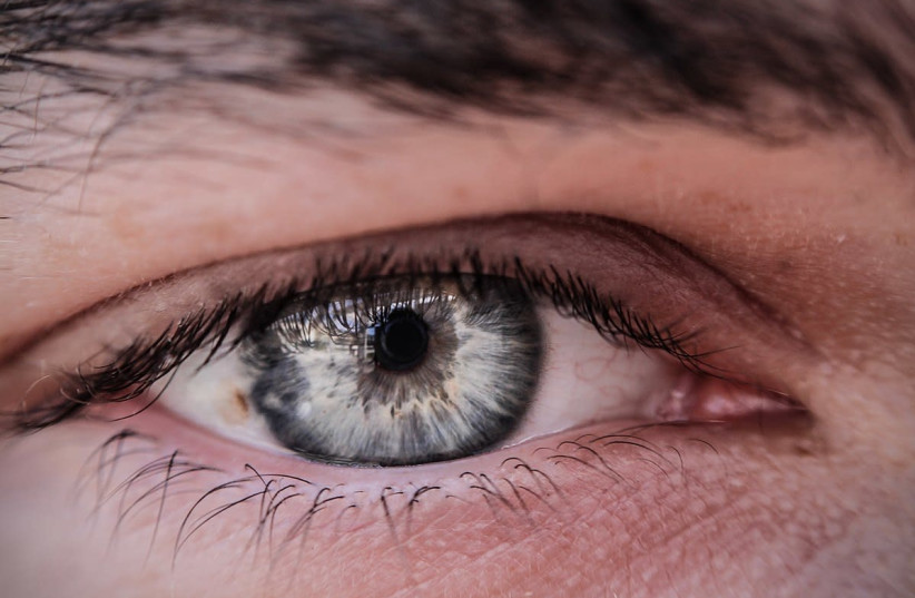 An illustrative picture of  a person's eye.  (photo credit: Wikimedia Commons)