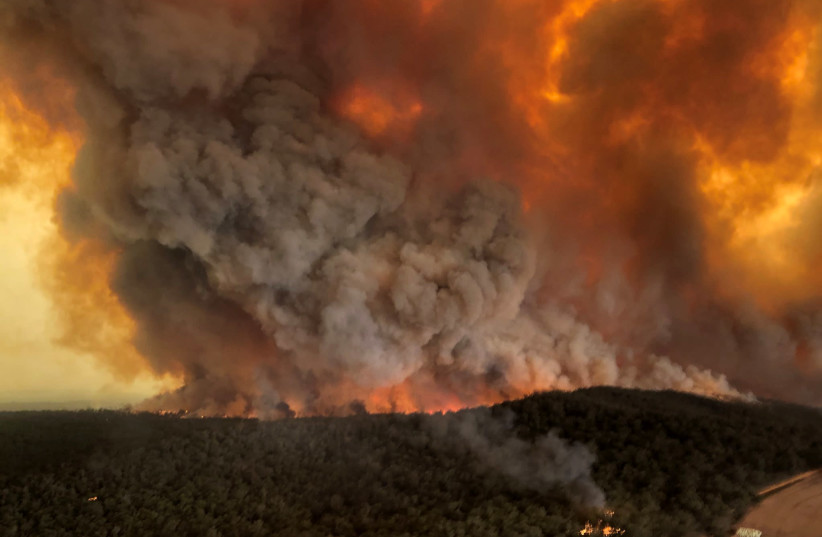 Aussie Jewish family on the fires: 'It's apocalyptic but we're coping'