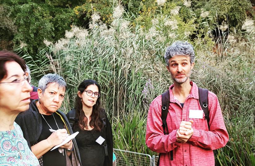 The pharmacy in your backyard: spotlight on herbal medicine - The Jerusalem Post
