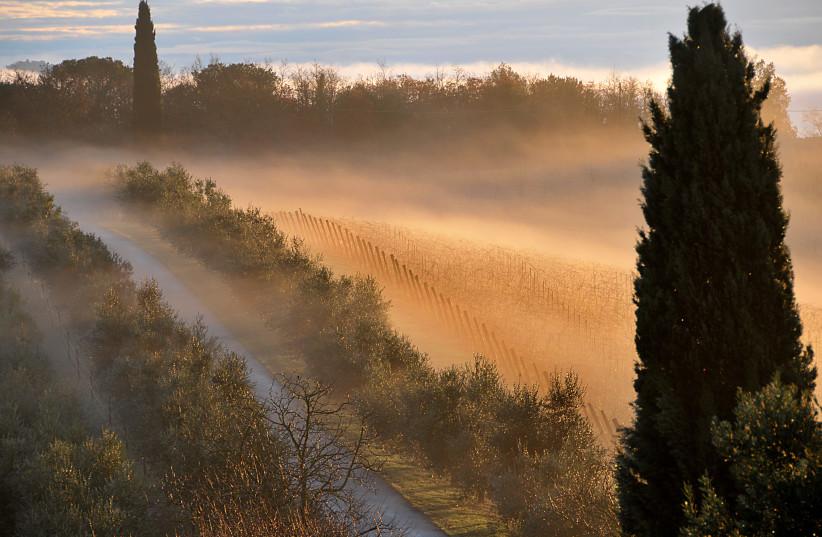 BEAUTIFUL TUSCANY, shrouded in fog.   (photo credit: Courtesy)