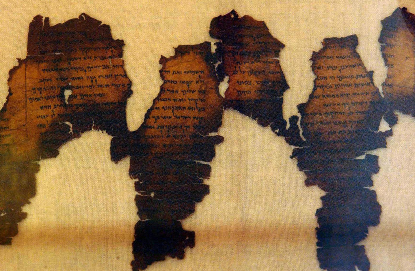 Fragments of the real Dead Sea Scrolls shown in 2003 (photo credit: NORMAND BLOUIN/AFP VIA GETTY IMAGES VIA JTA)