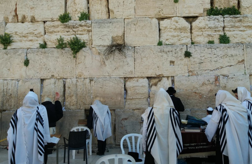 Shacharit morning services at the Western Wall. (photo credit: THE WESTERN WALL HERITAGE FOUNDATION)