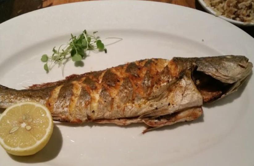The fish (Credit: Dvir Kaveh) (photo credit: Courtesy)