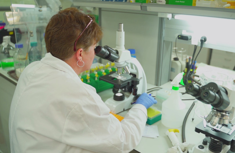 A MigVax scientist is seen working on a potential vaccine candidate.  (photo credit: Courtesy)