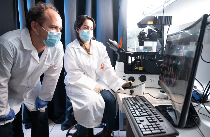 Esti Toledo and Guillaume Le Saux at Dr. Mark Schvartzman's laboratory at the Ben-Gurion University of the Negev. (photo credit: DANI MACHLIS/BEN-GURION UNIVERSITY OF THE NEGEV)
