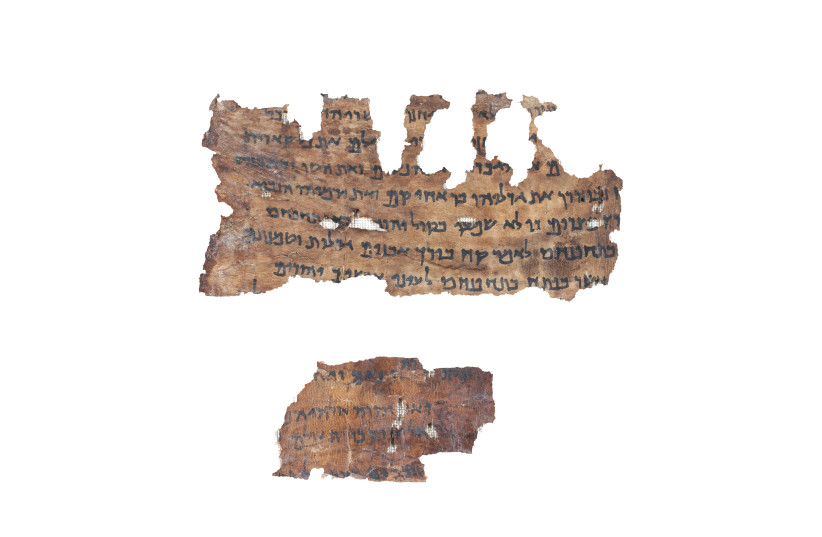 DNA ANALYSIS OF DEAD SEA SCROLLS UNVEILS THEIR ONCE SECRET ORIGIN