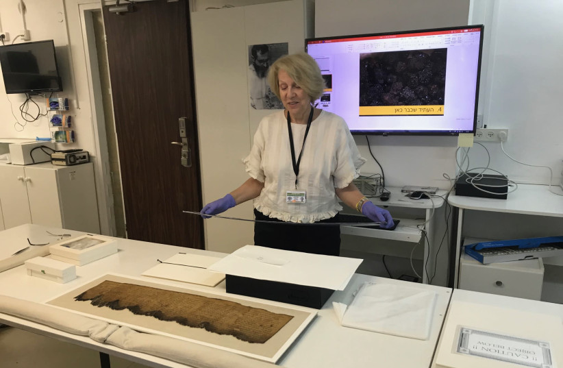 Israel Antiquities Authority conservator of the Dead Sea Scrolls Tanya Bitler with one of the best preserved scrolls. (photo credit: ROSSELLA TERCATIN)