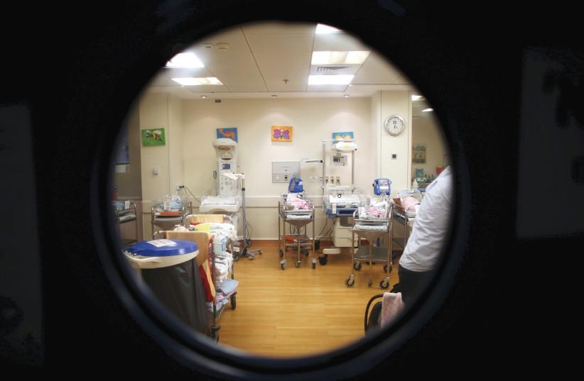 Peeking in at newborns at a Jerusalem hospital (photo credit: RONEN ZVULUN/REUTERS)